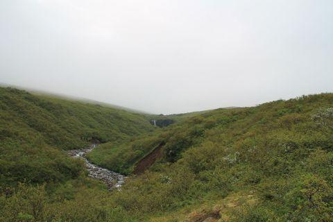Svartifoss in Skaftafell
